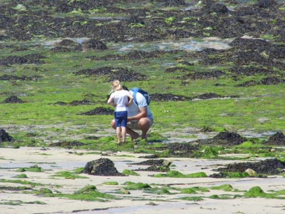 Lily and Julian searching for shellfish.